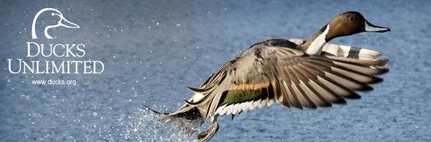 Slidell Ducks Unlimited Banquet – Oct 25th